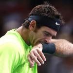 Dos grandes del Tennis, Del Potro y Murray fuera del Masters 1000 de París